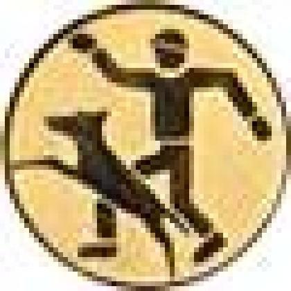Эмблема А166 (дрессировка)