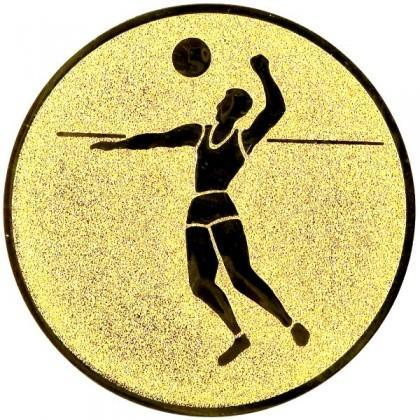 Эмблема А21 (пляжный волейбол)