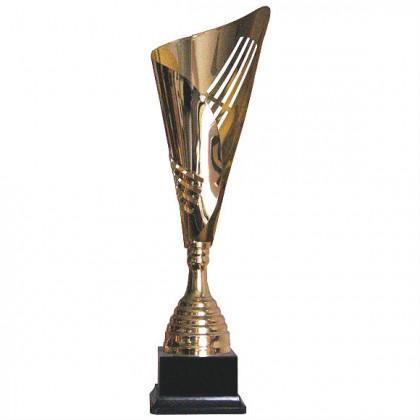 Кубок K2010